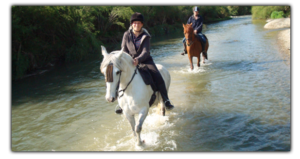 Activiteiten in Coín - Horse riding in Coin